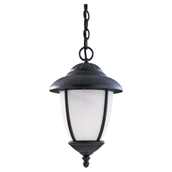 Sea Gull Lighting 60048-185 Outdoor Pendant Light