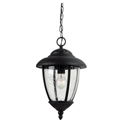 Sea Gull Lighting 60068-12 Outdoor Pendant Light