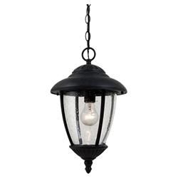 Sea Gull Lighting 60068-746 Outdoor Pendant Light