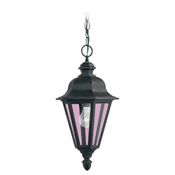 Sea Gull Lighting 6025-12 Outdoor Pendant Light