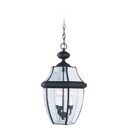 Sea Gull Lighting 6039-12 Outdoor Pendant Light