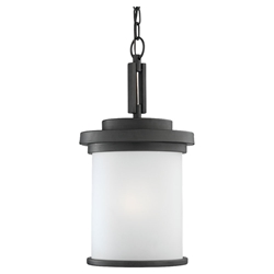 Sea Gull Lighting 60660-185 Outdoor Pendant Light