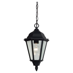 Sea Gull Lighting 60938-12 Outdoor Pendant Light