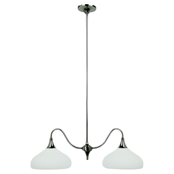 Sea Gull Lighting 66971BLE-841 Fluorescent Pendant Light