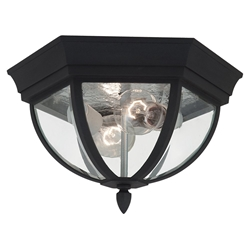 Sea Gull Lighting 78136-12 Outdoor Ceiling Fixture