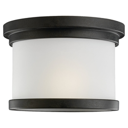 Sea Gull Lighting 78660-185 Outdoor Ceiling Fixture