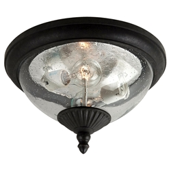 Sea Gull Lighting 88068-746 Outdoor Ceiling Fixture
