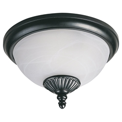 Sea Gull Lighting 89248PBLE-12 Outdoor Ceiling Light
