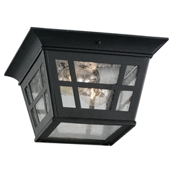 Sea Gull Lighting 78131-12 Outdoor Ceiling Fixture