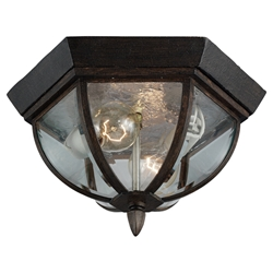 Sea Gull Lighting 78136-08 Outdoor Ceiling Fixture