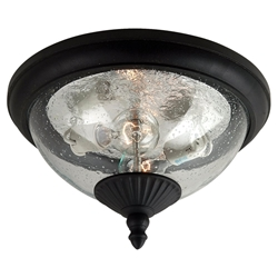 Sea Gull Lighting 88068-12 Outdoor Ceiling Fixture