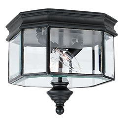 Sea Gull Lighting 8834-12 Outdoor Ceiling Fixture