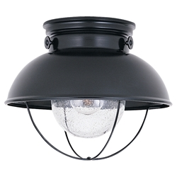 Sea Gull Lighting 8869-12 Outdoor Ceiling Fixture